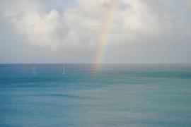 Antigua 207